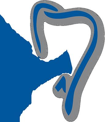 Zahnarzt dr.med.dent. Christian R. Grünhagen in 45147 Essen